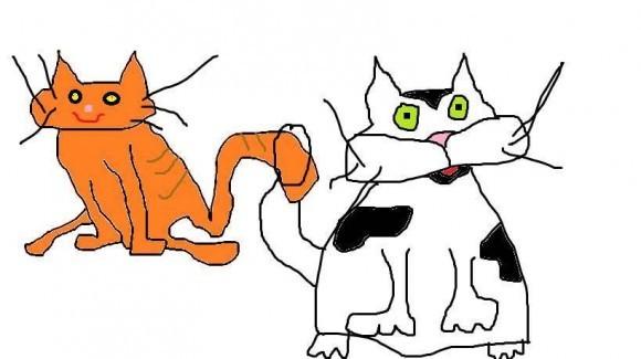 ogloszenie dwa koty